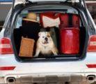 Диван, чемодан, саквояж…