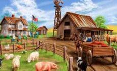 Беспроигрышная бизнес-идея фермерского хозяйства